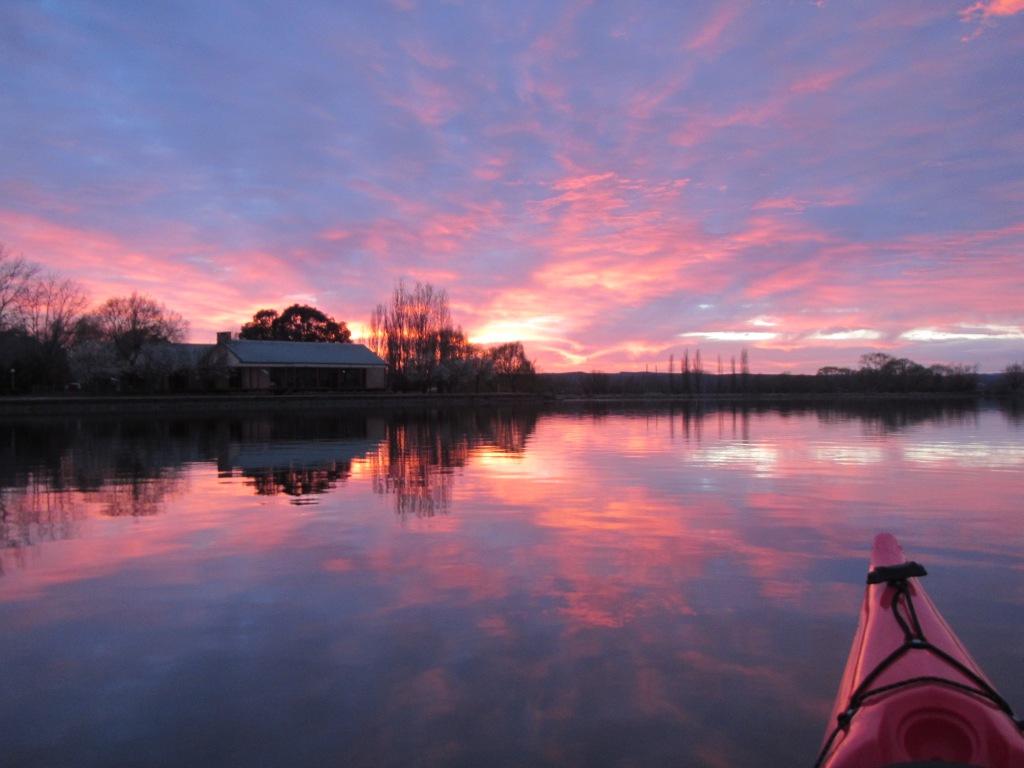 A fuchsia pink dawn