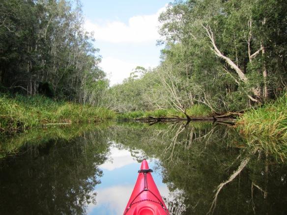 The Maigical Maria River