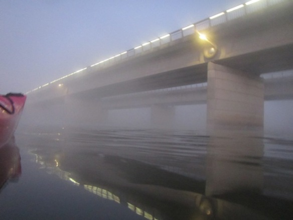 6.13am: Kings Avenue Bridge shroud in mist.