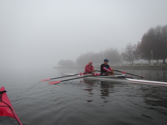 Even the scullers slowed down to experience it.