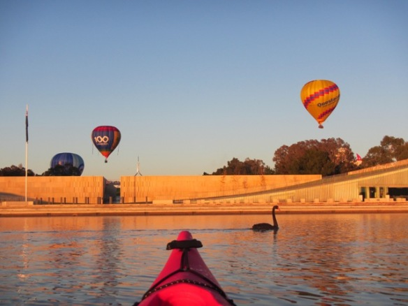 We had it all this morning.....Stunning sunrise, clear skies, hovering balloons and photo bombing swans.