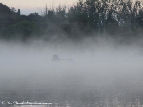 Here comes the Ice Dragons Outriggers from out of the mist.