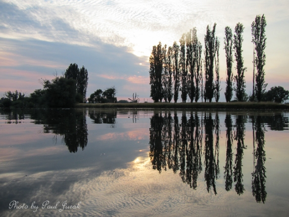 Mirror reflections on the Molonglo River.