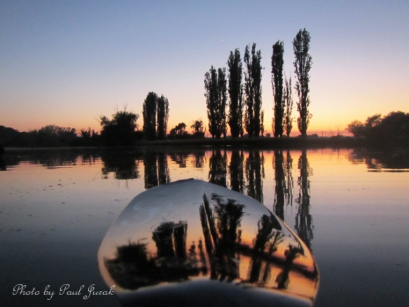 I decide to take Emma for a few early morning reflections on the Molonglo River first.