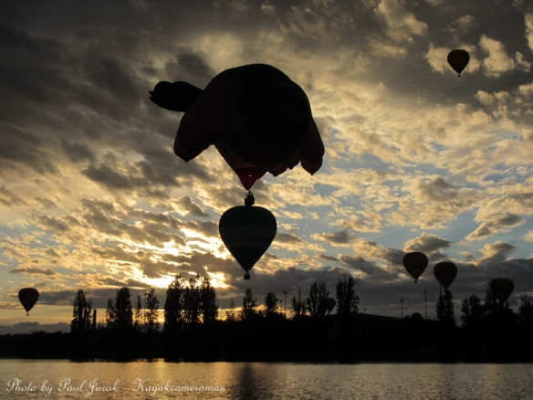 Synchronized Ballooning. The Sky Whale was having an early morning dance