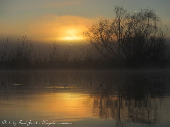 I was treated to gorgeous tones as the sun began to burn through the morning mist.
